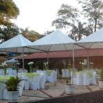 Aluguel de tendas piramidal